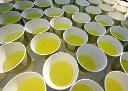 bicarbonato sódico para deportistas